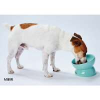 【エントリーでポイント5倍★】 食べやすい陶器食器 Mサイズ ペット食器 陶器 高さ フードボール 犬 猫 Mサイズ 食べやすい 安定 【TC】