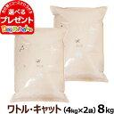 【クーポン配布中】アーガイルディッシュ ワトルキャット 8kg(4kg×2)(お取り寄せ)[成猫用総合栄養食]【通常2-5ヶ月の賞味期限で出荷】