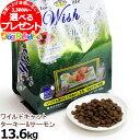 Wish ワイルドキャット ターキー&サーモン 13.6kg(お取り寄せ商品)  キャット キャットフード フード 猫 成猫 アダルト グレインフリー 穀物 不使用 穀物フリー