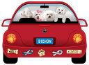 可愛い車に乗った犬のマグネットパップモービル 【ビションフリーゼ】
