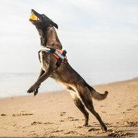 送料無料☆JULIUSK9・ユリウスK9IDCパワーハーネスMiniサイズ(参考犬種:パグ、コーギー、フレンチブル、柴犬等)ペット・ペットグッズ犬用品胴輪・ハーネス小型犬犬散歩お出かけ引っ張るつけ方簡単
