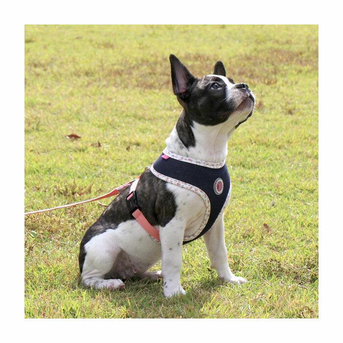 犬用 胴輪 バハラハーネス VAFARA HARNESS:S,M,Lサイズ PINKAHOLIC N.Y. ピンカホリックニューヨーク ペット ドッグ 小型犬