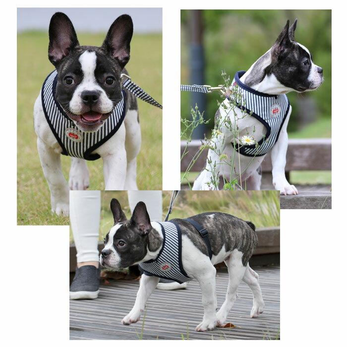 犬用 胴輪 ボビーハーネスA BOBBY HARNESS A:XLサイズ PUPPIA パピア ペット ドッグ 中型犬