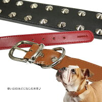 マックス首輪:Mサイズ【MAX】【2012春夏新作】【PUPPIA・パピア】/犬用/ペット用品/小型犬/中型犬/【05P28Mar12】pama-ac990