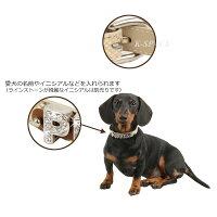 マディソン首輪:Sサイズ【MADISON】【2012春夏新作】【PUPPIA・パピア】犬用/ペット用品/小型犬/カラー/【05P28Mar12】pama-ac991