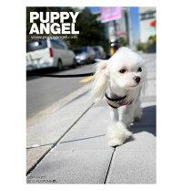 胴輪ハーネスPALondonCallingFASTENYHARNESS(リード付):XSSMLXLサイズペット犬用PUPPYANGELパピーエンジェル犬犬用ペットドッグ