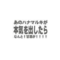【送料無料】 ハナマルキ 透きとおった甘酒プレミアム 500ml×1本