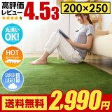 ラグ ラグマット 送料無料 rug 北欧 カーペット グリーンも 250×200 200×250cm 洗える 滑り止め 絨毯 冬用 夏用