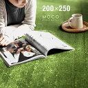 ラグ ラグマット 送料無料 rug 北欧 カーペット グリーンも 250×200 200×250cm ...