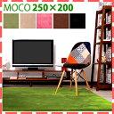カラー・サイズを選べるラグマット誰かに教えたくなる触り心地!250×200 200×250cm ラグ グ...