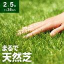 人工芝 ロール 2m×5m 芝丈35mm 送料無料 人工芝 芝生マット 人工芝生 人工芝マット 人工芝ロール 芝生 ロールタイプ 固定ピン 庭 ベランダ テラス バルコニー ガーデニング ガーデン 屋上緑化 u字ピン 水はけ
