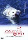 【新品】【DVD】あの頃映画 松竹DVDコレクション 80's Collection::マリリンに逢いたい 安田成美
