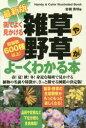 【新品】【本】街でよく見かける雑草や野草がよーくわかる本 収録数600種以上! 岩槻秀明/著