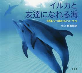 【新品】【本】イルカと友達になれる海 大西洋バハマ国のドルフィン・サイト 越智隆治/写真と文