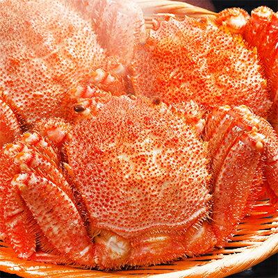 【毛蟹・姿】>北海道産【超超特大 1kg、超特大 750g、堅蟹 420g】