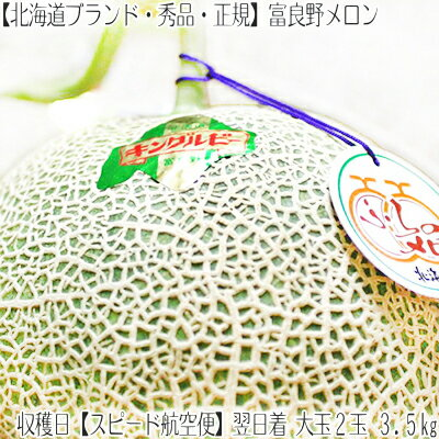 【果物】メロン、さくらんぼ、スイカ、いちご、ぶどう、秋りんご> 北海道富良野メロン