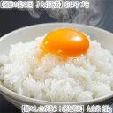 【北海道産 送料無料 お米】北海道 おぼろづき 【白米】 2...