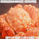 【毛ガニ 毛蟹 送料無料】【超特大】北海道産 太平洋【最高級...