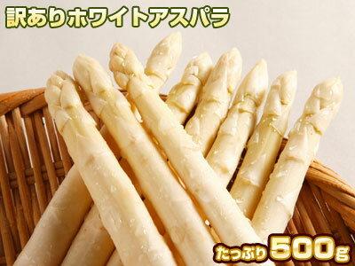 訳ありのホワイトアスパラ×500g!爽やかな北海道からお買い得価!!5月後半頃から収穫され次第、御注文順にお届け。お届け日指定できません