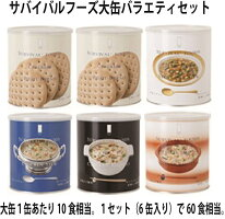 25年備蓄のサバイバルフーズ小缶バラエティセット(送料無料)