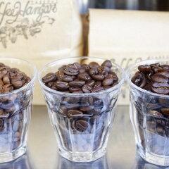ダブルトール・裏原ブレンド|DoubleTallUraharaBlend-本格自家焙煎コーヒー豆珈琲豆