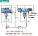 【直送品】 日立 ダブルレール形ホイスト Super Vシリーズ 7.5t/揚程 8m ペンダント式 (7.5D-T55-W3) (巻上・横行インバータ・電動トロリ付)