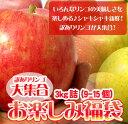 りんご食べ放題♪いろんなリンゴの美味しさを楽しめる♪シャキシャキ新鮮!訳ありりんごが大集...
