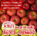 りんご訳あり10kg送料無料リンゴ北海道青森リンゴ※沖縄は送料別途加算ポイント消化ゴルフコンペ敬老の日秋分の日