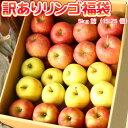 青森りんご 5kg 訳あり 送料無料 福袋 北海道産 青森産 リンゴ ※沖縄は送料別途加算