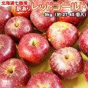 りんご 北海道産 訳あり 蜜入 レッドゴールド リンゴ9kg(27-45個入) 送料無料※沖縄は送料別途加算