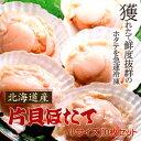 とれたての美味しさ!焼きホタテに最適♪プリップリ激うま♪北海道産片貝ホタテ(小サイズ)10...