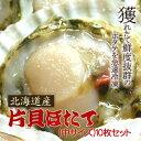 とれたての美味しさ!焼きホタテに最適♪プリップリ激うま♪北海道産片貝ホタテ(中サイズ)10...