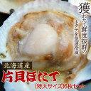 とれたての美味しさ!焼きホタテに最適♪プリップリ激うま♪北海道産片貝ホタテ(特大サイズ)6...