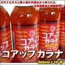 さっぱりうまい♪北海道限定の炭酸飲料!コアップガラナ500ml×10本【楽ギフ_のし】【05P13Feb12】