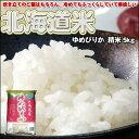 北海道米のエース!ゆめぴりか精米