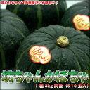 手のひらサイズの美味しいかぼちゃ♪坊ちゃんかぼちゃ5-10玉入(1箱3kg前後)【楽ギフ_のし】