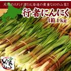 北海道行者にんにく1kg「送料無料」ポイント消化ホワイトデー入学祝