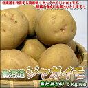 人気「NO.1」の美味しさ!北海道じゃがいも「きたあかり」 Lサイズ5kg前後【楽ギフ_のし】
