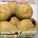 人気「NO.1」の美味しさ!北海道じゃがいも「きたあかり」 Lサイズ10kg前後【楽ギフ_のし】