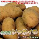 煮物・鍋物に最適!北海道じゃがいも「メークイン」 Lサイズ5kg前後【楽ギフ_のし】