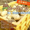 大自然で育った美味しいジャガイモをお届けいたします!!北海道産訳ありじゃがいも「メークイン...