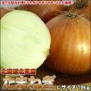 シャキシャキ新鮮!サラダにも最適♪送料無料 北海道産たまねぎ 10kg  Lサイズ【楽ギフ_のし】