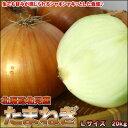 シャキシャキ新鮮!サラダにも最適♪送料無料 北海道産たまねぎ 20kg  Lサイズ【楽ギフ_のし】