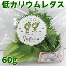 低カリウムレタスDr.ミールオリジナル野菜【RCP】
