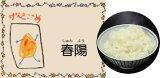 Dr.ミールオリジナル低たんぱく・無洗米春陽米 (しゅんようまい) 【平成30年度産】5kg