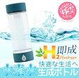 日本製 ADIR コンパクト水素水生成器 ボトル 2色 ブルー/シルバー H60005 H60006