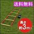 トレーニングラダー 3m トレーニング用品 野球 陸上 ラグビー アジリティー サッカー フットサル 練習器具 部活 02P03Dec16