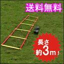 トレーニングラダー 3m トレーニング用品 野球 陸上 ラグ...