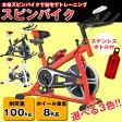 フィットネスバイク スピンバイク トレーニングバイク 小型 室内用 小型サイズ 本格トレーニング 【送料無料】