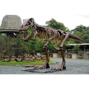 なんと全長8m以上!T-REX化石標本巨大オブジェ!全長8m超!スケルトンT-REX(ティラノサウルス...